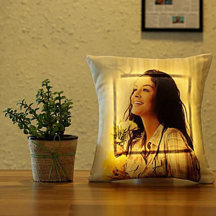 good luck plant with led cushion:Plants N Personalised Gifts