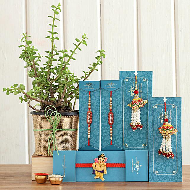 online Jade Plant & Set Of 5 Rakhis