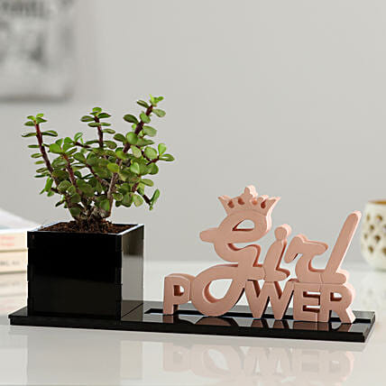 Jade Plant With Girl Power Table Top
