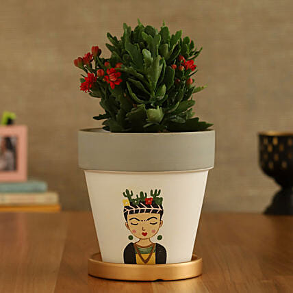 Kalanchoe Plant In Girl Printed Golden Plate Pot