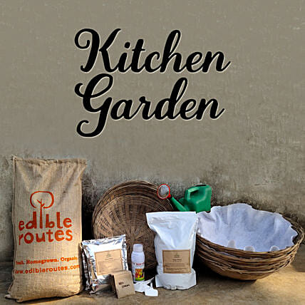 Leafy Greens Kitchen Garden Baskets:Send Organic Seeds