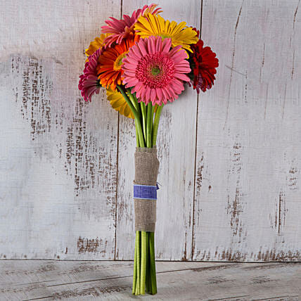 Lovely Gerberas Bunch