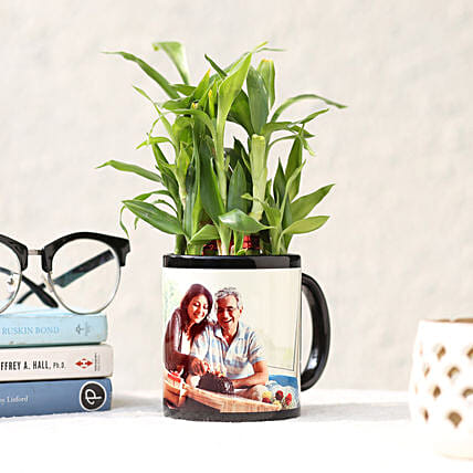 Personalised Lucky Bamboo In Black Mug