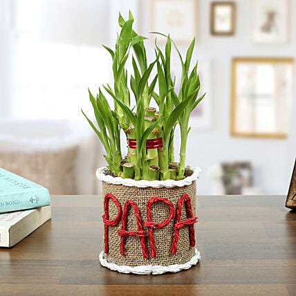 Personalized Lucky Bamboo for Father:Fathers Day Gifts Mumbai
