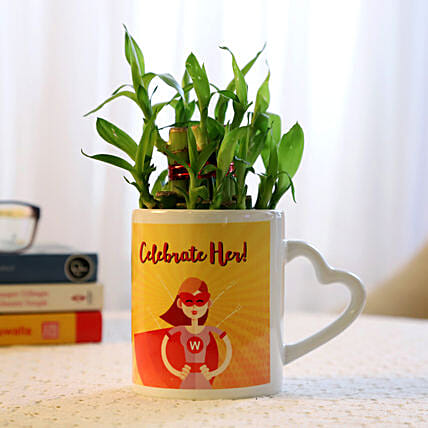 best plant for womens day