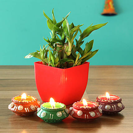online Lucky Bamboo Plant & Pearl Diyas Combo