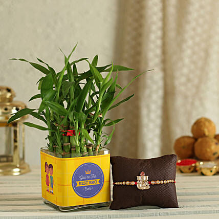 Trendy Rakhi with Plants Online