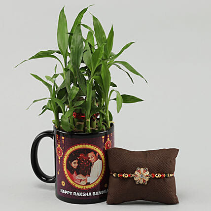 rakhi with plant combo for brother