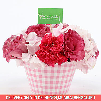 Buy Online Mixed Flowers In Cupcake Pot