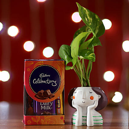 Online Money Plant And Cadbury Celebrations