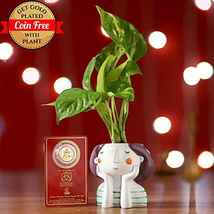 Online Money Plant And Free Gold Plated Coin