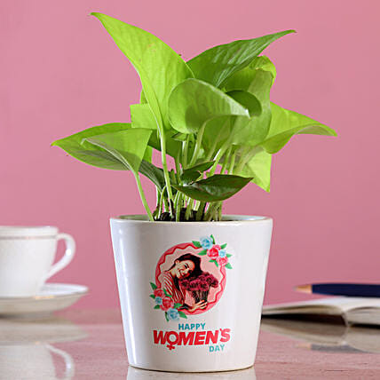 Money Plant In Happy Women s Day Planter