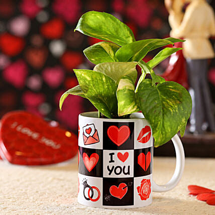 online money plant in printed mug