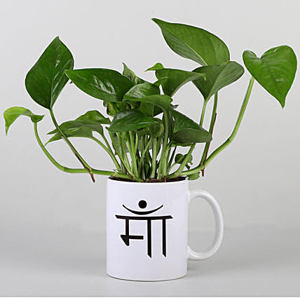 ma printed mug with money plant:Mugs Planters