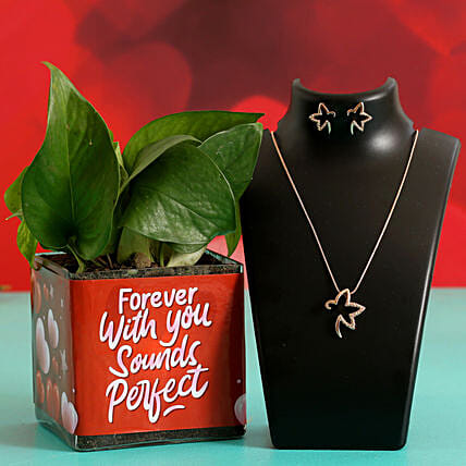 Money Plant In Sticker Vase & Jewellery Set Hand Delivery