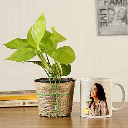 plant with mug online