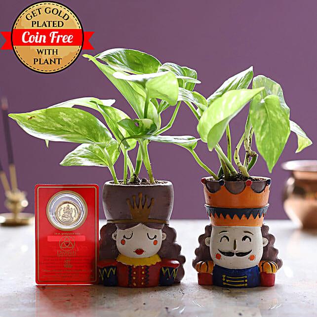 Online Money Plant Set:Resin Planters