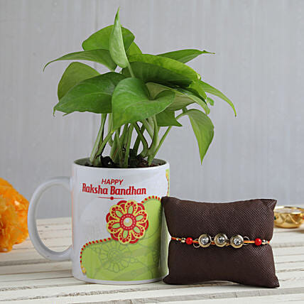 Online Plant With Rakhi For Bhai:Mauli Rakhi