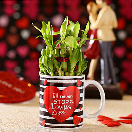 Never Stop Loving You Bamboo Plant In Mug