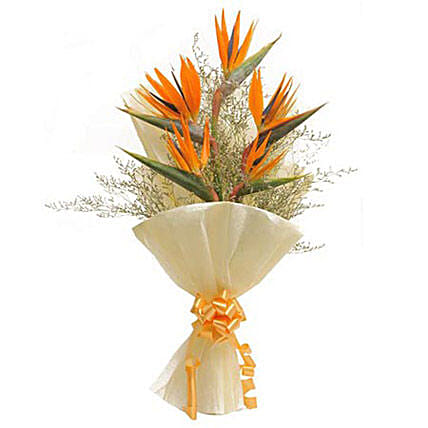 One Sided Bunch - One Sided Bunch of 5 orange birds of paradise in white paper packing.