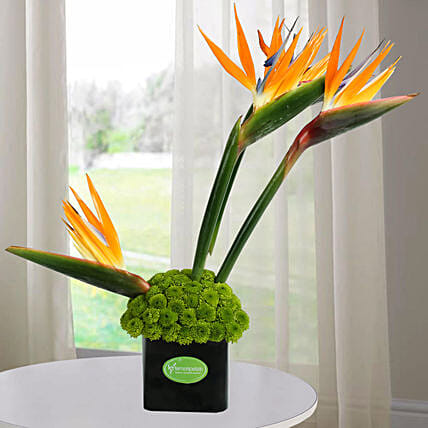 Flower Vase Arrangement