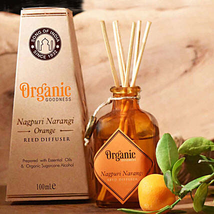 Orange Organic Diffuser with Reeds