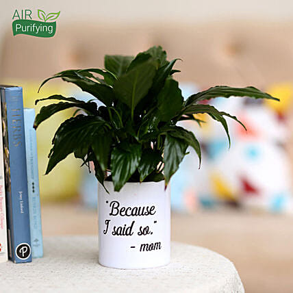 peace lily in printed white mug for mothers day
