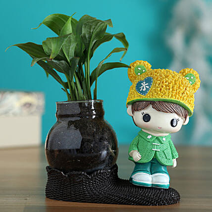 Peace Lily Plant In Yellow Cap Boy Glass Vase