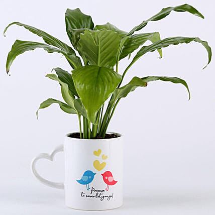 Bird Printed Pot for Promise Day:Mugs Planters