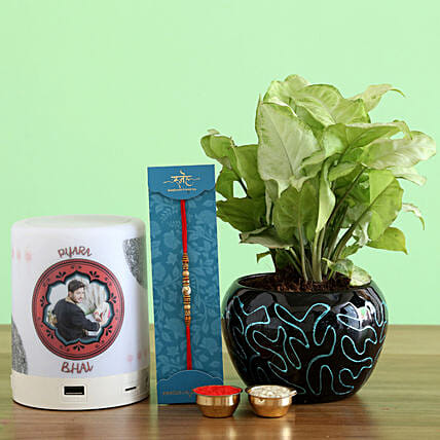 Pearl Rakhi With Syngonium Plant and Speaker