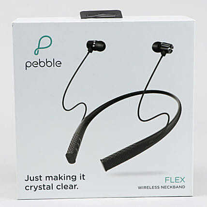 Pebble Flex Earphone