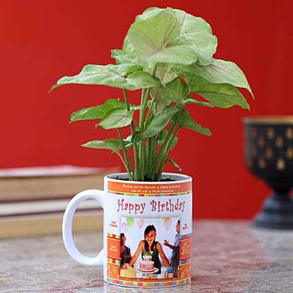 printed mug with syngonium plant for birthday:Personalised Pot plants