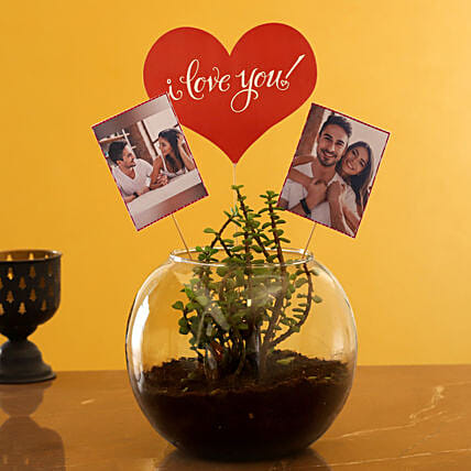 Buy Personalised Love Jade Plant Terrarium:Succulents and Cactus Plants