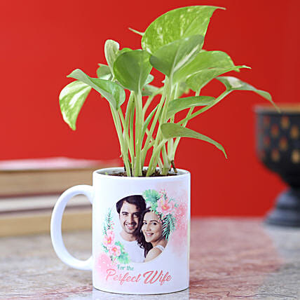 online mug with plant for wife:Personalised Pot plants