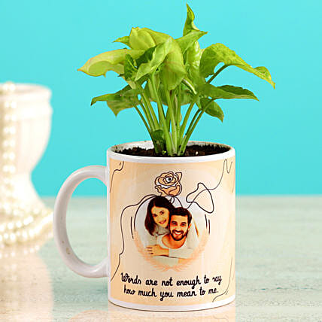 Karwa Chauth Coffee Mug & Plant