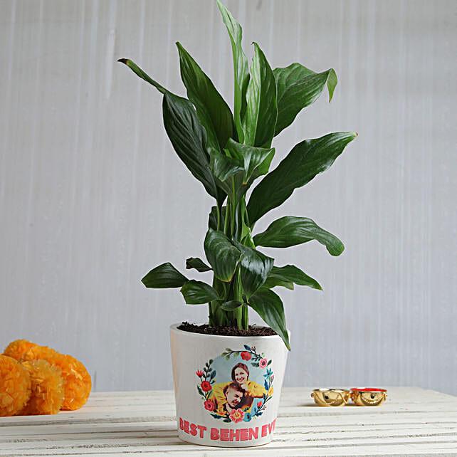 Photo Plant Mug For Sister Online