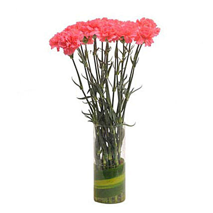 Pink Carnations N Vase - Bunch of 15 pink carnations in a glass vase