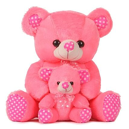 Online Teddy with Baby Bear:Soft Toy