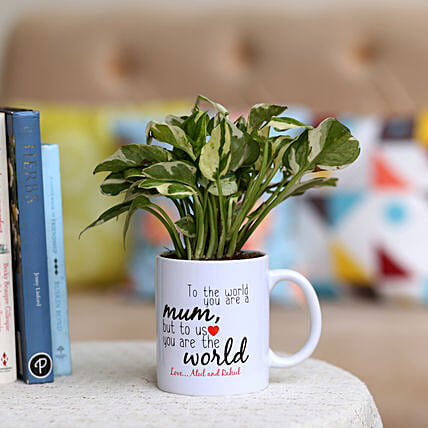 happy mothers day plant n printed mug:Mothers Day Personalised Pot plants
