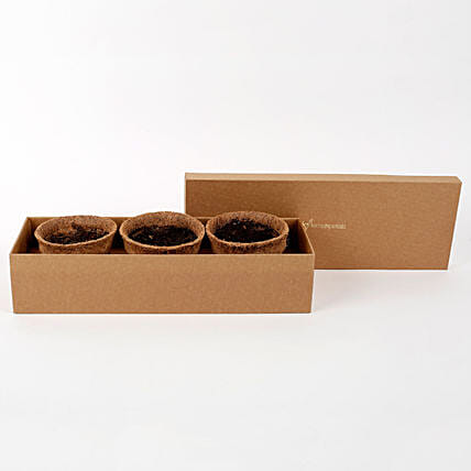 Premium Self Growing Plants Kit with Seeds & Coir Pots