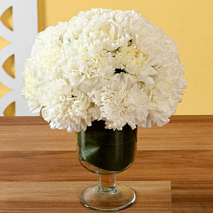 Online Carnations