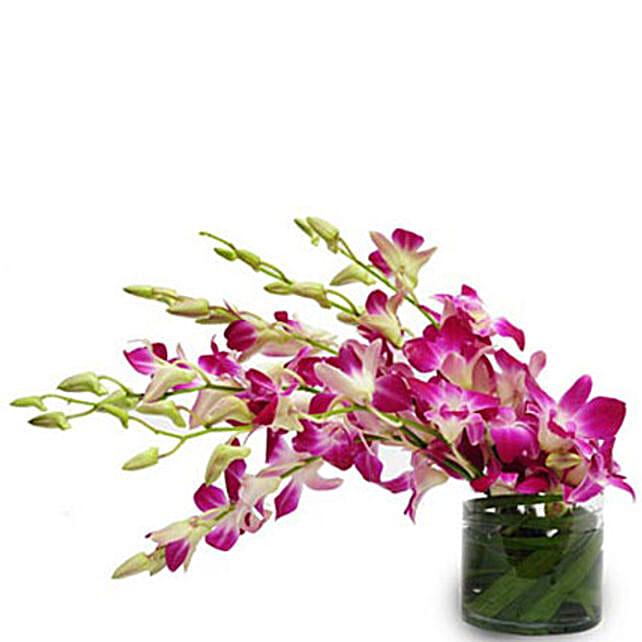 Purple Paradise - Glass vase arrangement of 6 purple orchids.