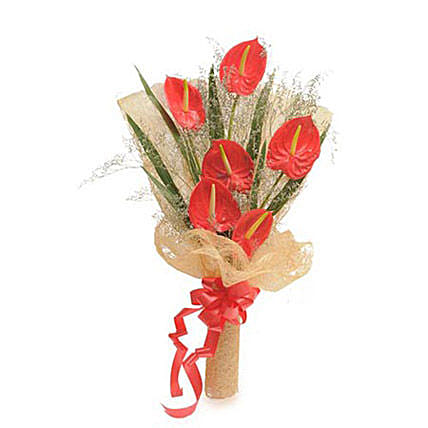 Red Anthuriums - One Sided Bunch of 6 Red Anthuriums in white Jute Packing.