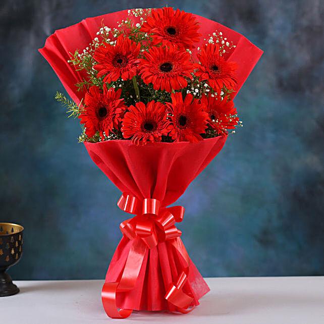 Red Elegance Gerbera Blossoms:Gerberas