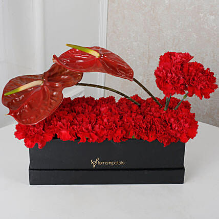 Carnations Flower Box