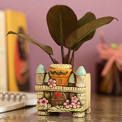 Red Philodendron Plant In Ceramic Pot:Garden Accessories
