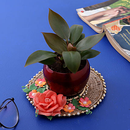 Red Philodendron Plant In Red Pot And Pink Floral Plate