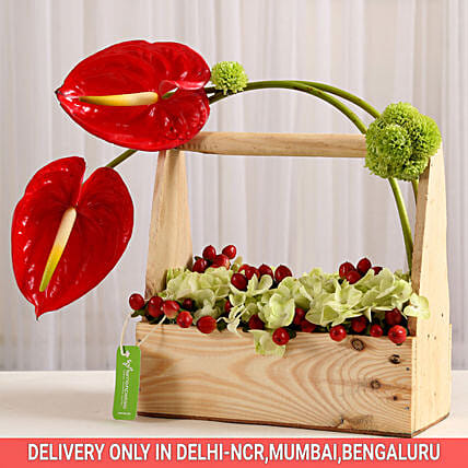 cute floral arrangement:Send Anthuriums