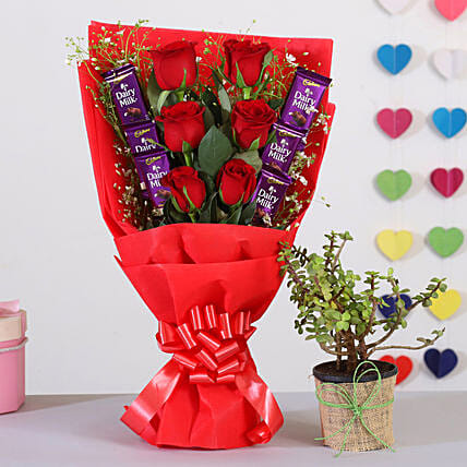 Red Roses Bouquet With Jade Plant Chocolates