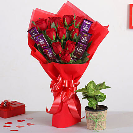 Red Roses Bouquet With Syngonium Plant Chocolates